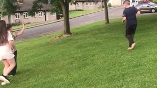 Cat chases drone