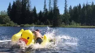 Man jumps on yellow duck inflatable toy in lake - Video
