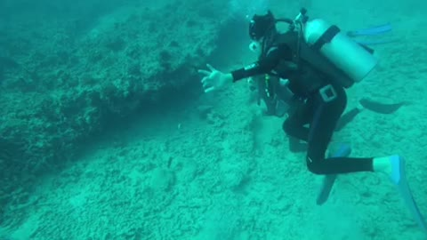 Discover Scuba Diving Gone Wrong