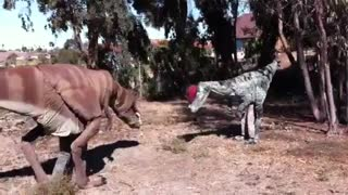 Awesome Dinosaur Halloween Costumes - Video
