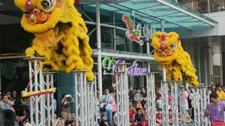 Stilt Dancers Wearing Dragon Costumes Celebrate the Coming of the Dry Season in Malaysia