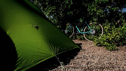 St. Patrick's Day Camping Safety Tips