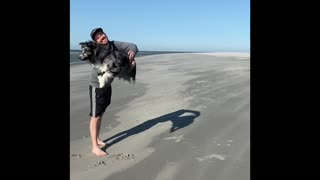 Australian Shepherd incredibly jumps through owner's arms