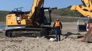 Tractor on beach to help sailing boat stuck on sand  - Video