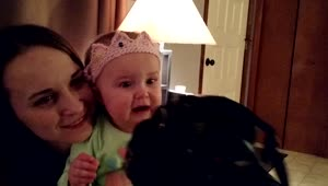 Adorable baby loves daddy's photography - Video