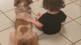 Little girl chatting with her dog  - Video