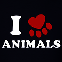 Animals_squad