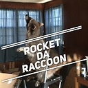 RocketDaRaccoon