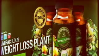 Miracle Garcinia Cambogia - Video