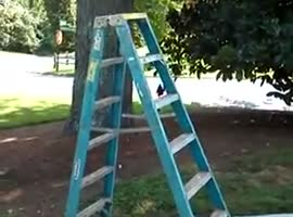 Self Walking Ladder