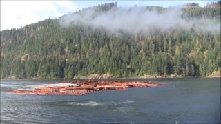 Log Barge Dumps - Video