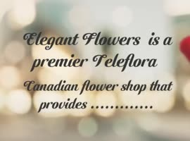 Calgary flower delivery shops | Calgary Florist - Video