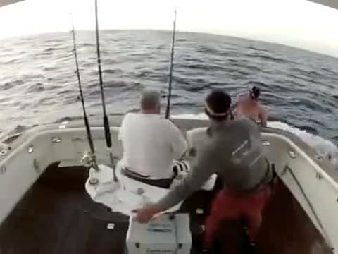 FISH JUMPS ONTO BOAT