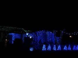 Spectacular Christmas Light Show! - Video