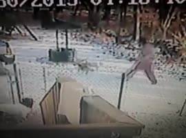 Vicious Cat Attacks Woman - Video