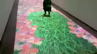 Digital Carpet - Video