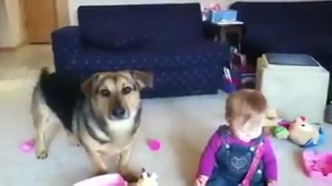cute baby and cute dog