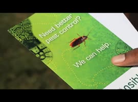 Responsible Seasonal Protection Program- San Jose Pest Control Solutions - Video