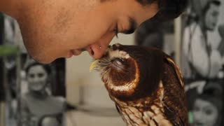 Owl kissing his master - Video