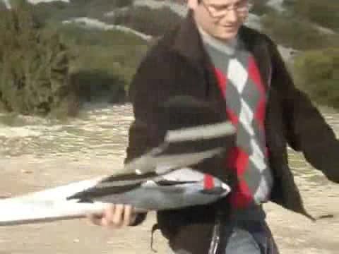 Man Forgets to Turn on RC Plane