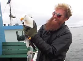 Fisherman Catches a Seagull