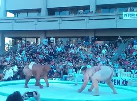 sumo wrestling - It do not see every day! - Video