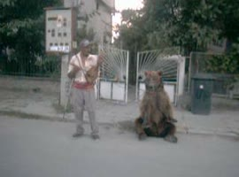 Gypsy with dancing bear - Video