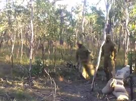 Soldiers Try to Knock Down Some Trees