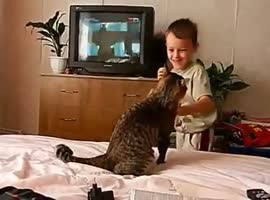 _Cat Gets Revenge from Annoying Kid_ - Video