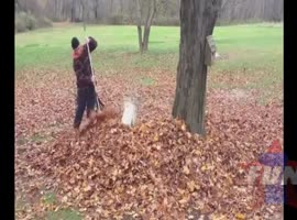 FAIL WIN COMPILATION OF THE 24 NOVEMBER 2013 - Video