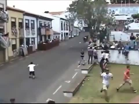 Man Becomes Unwitting Participate In Bull Run!!