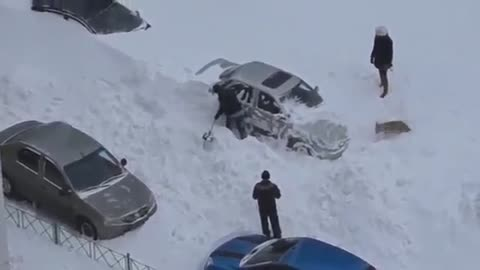 Dog friendly snow park in Russia
