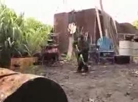 monkey chasing soldiers in africa with Kalashnikov