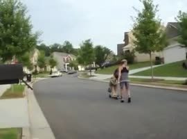 dog makes tricycle - Video