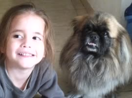 Daughter and Dog Smile for the Camera! - Video