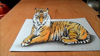 Drawing an Impressive 3D Tiger - Video