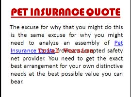 Pet Insurance Quote - Video