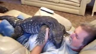 My husband has a new pet. - Video