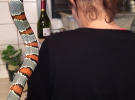 Woman gets shocked by Snake - Video