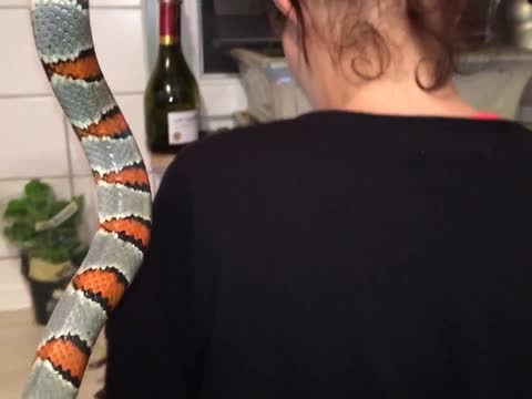Woman gets shocked by Snake
