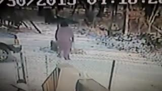 Cat attacks woman in the snow - Video