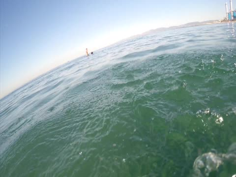 Surfer Encounters Great White Shark!