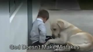 Little Boy w Down's Syndrome & His Dog - Video