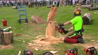 One makes owl tree with chainsaw - Video