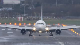 Pilot successfully lands Boeing 767 - Video