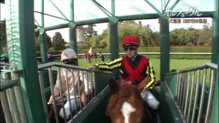 2010-2013 Orfevre Documentary - Video