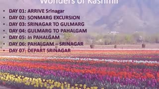 Kashmir tour packages at Travel Excellence - Video