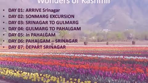 Kashmir tour packages at Travel Excellence