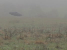 Bizarre Spotting In Foggy Field