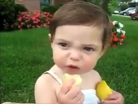 Babies Taste Lemons For The First Time!